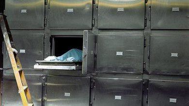 Photo of সৌদিতে ২০ শতাংশ বাংলাদেশীদের মৃত্যু ঘটনা ভাইরাসে